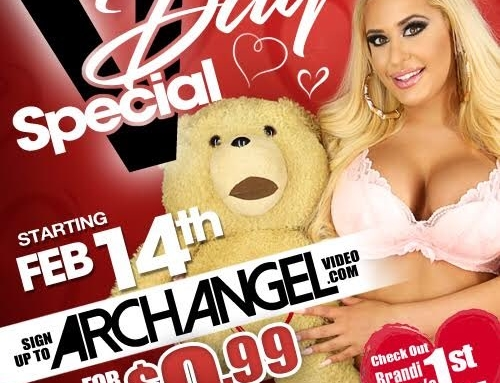 ArchAngel Launches A Website Discount Beginning Valentine's Day!